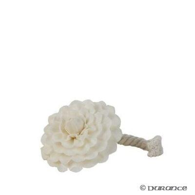 Durance cvijet kamelija za mirisni difuzor